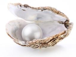 perla excelente2