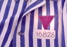 triángulo púrpura